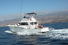Yacht сharter in the Canary Islands Sportfisherman 14m